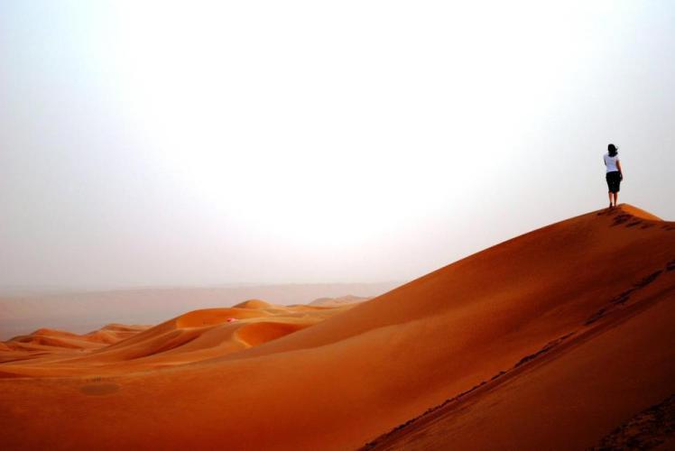 desert myl